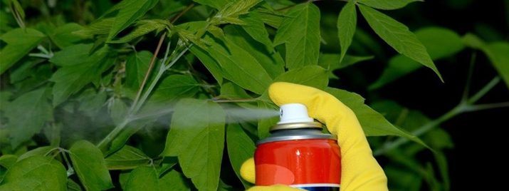 Insecticides + Miticides